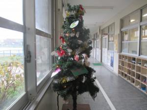 271221クリスマスツリ- (1)